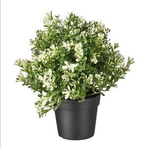 Artificial plant pot 🌱